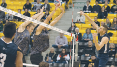 [Hannah Tamimi, File Photo] Roy Powell spikes the ball past his opponents in a match against California State University, Long Beach. Powell has signed with Habo Volley Club in Sweden.