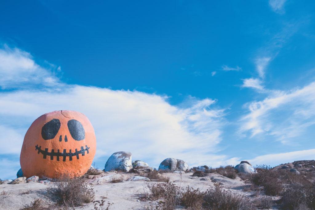 dominickcopas_pumpkin_web_02
