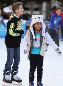 icerink_web_02
